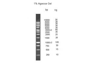 ДНК маркер молекулярного веса, M1Kb