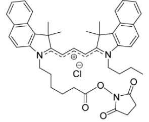 By-3.5 Indocarbocyanine oxysuccinimide ester (Cy3.5-NHS analogue)