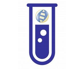 Олиго(тимидин)12, 100 мкМ, 0.15 mL